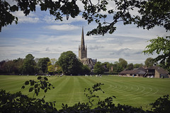 Norwich Cathedral Framed [136/365 2017] (steven.kemp) Tags: norwich cathedral cricket ground tree sky cloud
