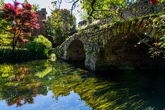 ponte del macello (lucafabbricesena) Tags: oasidininfa garden roman bridge architecture grass alga ruins flower rose tree history river old plant stilllife algae stones reflection spring nikon d800 weed