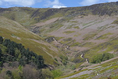 Grindsbrook Clough, Peak District National Park, Derbyshire, England. (westport 1946) Tags: england unitedkingdom highpeak peakdistrict nationalpark thenationaltrust derbyshire edale grindsbrook grindsbrooclough uppertor horizon ridge mountains mountainside mountain hillside hill foothill patchwork trees moorland grasslands grass fields field valley canyon hikerspath sheep rockformation rocks serene peaceful pastoral tranquil idyllic rural landscape outdoor countryside