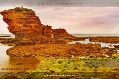 Australian-Coast-DSC_6603 (fatima_suljagic) Tags: landscape fineartprints fatimasuljagicmelbourne photoprints canvasprints australia nature naturephotographer photographer photographermelbourne artstudiomaja