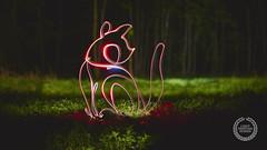 Lightpainting animals - wild dog (Light painting, Lightgraffitti, Long exposure, lig) Tags: longexposure night lightpaint lightpainting reflections slowshutter lighttrail lighttrails nightphotography stophunting singleline oneline nature