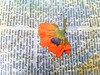 Orange Poppy Flower and Leaves Collage (shaire productions) Tags: bookarts paper printing ecoprinting ecoprint botany botanical flower flora fauna plants leaves arrangement image picture photo photograph photography imagery design nature natural artprocess creativeprocess orange poppy dictionary page text writing printed words