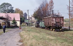 Loco Px48-1919  |  Gniezno, Wielkopolska  |  1996 by keithwilde152 - Taking traffic to both Witkowo and Powidz, by about mid-day shunting and deliveries are seen completed at Powidz with the crew at leisure in a rural idyll complete with windmill.   While bagged material, possibly fertilizers, had been manually unloaded from the brake van at the station building, the single coal load is then positioned to be deposited at the military base on the town outskirts on the return journey. Arrival back at Gniezno after collecting coal empties from Witkowo at about 14.00 16th October 1996