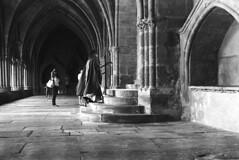 Clair-obscur (Franck Huet) Tags: leica m3 leitz summarit 50mm d76 kodak 400300asa 11 20° clairobscur bayonne cathédrale church blackwhite bw noirblanc nb cloitre