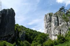 DSC_2609 (oria77) Tags: dolina bolechowicka krakow valley woodland poland