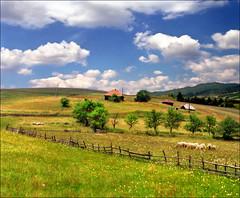 Zlatibor (Katarina 2353) Tags: zlatibor serbia katarina2353 katarinastefanovic