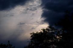 Undecided evening weather (mkk707) Tags: epsonrd1x seikoepsonstyle leitzsummicronmi5cmcollapsible sooic icx413aq ccd cloud sunset weatherchange rangefinder vintagelens vintagedigitalcamera