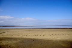 _DSC06264_Tricolour (Ian Gearing) Tags: seaside burnhamonsea burnham sea side somerset west england uk street furniture beach severn estuary river