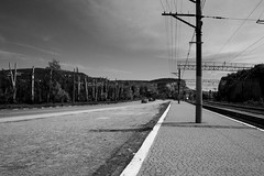 Short haircut (Alexander Oleynik) Tags: дорога платформа inkerman road railway bw view crimea ландшафт инкерман1