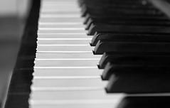 Ebony and Ivory live together in perfect harmony... (P McCartney and S Wonder) (John (thank you for >1.5 million views)) Tags: 7dwf crazytuesdaytheme music piano keyboard musical musicinstrument monochrome bw blancoynegro indoorphotography song ebonyandivory