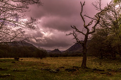 Looking towards Castle Crag and into the Jaws of Borrowdale. (Harvey Smith) Tags: english lake district countrysidewalks thelakes landscape cumbria northwest trees landscapephotography 2017 pentax harvey smith photography 2016 northern england spring lakes green englishlakedistrict harveysmithphotography2017 lakedistrict northernengland derwentwater borrowdale castlecrag manesty