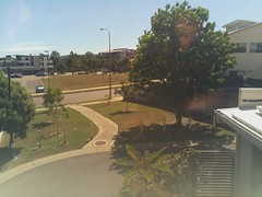 2017-04-28T11:30:04.225356+10:00 (growtreesgrow) Tags: trees timelapse raspberrypi