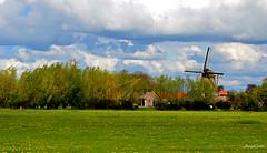 Fleurs Landscape (JaapCom) Tags: jaapcom landscape landschaft landed clouds wolken zalk holland mill molen dutchnetherlands natural