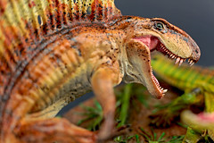 Dimetrodon vs Ophiacodon with dead Seymouria ( 1:10 )  - HDR - (RobinGoodfellow_(m)) Tags: dimetrodon ophiacodon vitali klatt 110 martin garratt urzeitshop hdr