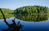 In this moment (Nikon Guy 56) Tags: lake peterslake trees water reflection blue nikon d60 nature landscape waterscape