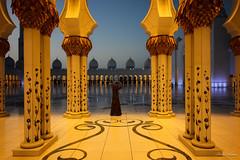Sheikh Zayed Mosque at night (The Odyssey Experience) Tags: nightphotography travel uae abudhabi sheikhzayedmosque