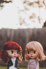 Cupcake Sisters
