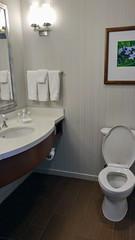 Bathroom at the Hilton Garden Inn Alexandria Old Town (Evan Didier) Tags: hilton hiltongardeninn alexandria oldtown virginia princestreet metro wmata kingstreet hotel room king hgi bathroom bath toilet towels sink toiletries mirror