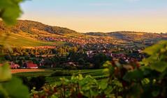 Vallée des vaux (Anthony Duvaut) Tags: vallée valléedesvaux vigne couchédesoleil bourgogne saôneetloire saintjeandevaux saintdenisdevaux crépuscule