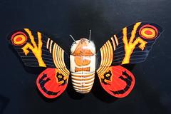 Mothra Tin Wind-Up (Billiken 1992) (Donald Deveau) Tags: billiken mothra tintoy windup toys toyphotography japanesetoy japanesemonster kaiju