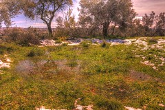 Prado en las afueras de Asque (Huesca - España) (Carlos M. M.) Tags: huesca aragón pirineos peñaguara canon100d hdr agua water excursión hiking
