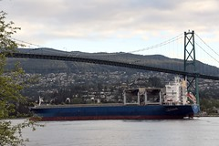 Star Japan under the Lions Gate Bridge (D70) Tags: star japan under lions gate bridge cargocontainership imo 9254654 mmsi 257329000 call sign lazv5 flag norway no ais vessel type cargo gross tonnage 32844 deadweight 44807 length overall breadth extreme 198m 31m year built 2004 draught 76m speed recorded max average 190 121 knots vancouver harbour bc canada