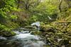 Llanberis (Rob Pitt) Tags: ceunant mawr waterfall llanberis north wales snowdonia river cymru rob pitt photography canon 750d 1855mm nd4 spring