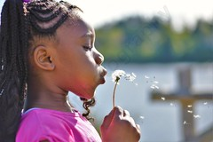 Make a wish (Ad8photography) Tags: dandelion flower girl photo photography portrait kids sun sunlight park wish