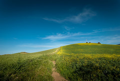 An ordinary landascape (Michele Naro) Tags: trapani landschaft landscape sicily sicilia sicile sizilien samyang14mmf28 italien italy italia italie iamnikon nikond80