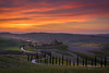 DSC00306_s (AndiP66) Tags: agriturismobaccoleno agriturismo baccoleno zypressen cypresses zypressenstrasse cypressstreet sonnenuntergang sunset nebel dunst fog mist sonne sun evening abend april spring 2017 siena pienza sanquiricodorcia valledorcia valle dorcia toscana tuscany italien italy sony sonyalpha 7markii 7ii 7m2 a7ii alpha ilce7m2 sigma sigma24105mmf4dghsmart sigma24105mm 24105mm art amount laea3 andreaspeters
