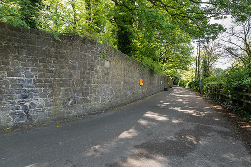 THE RIVER NORE CANAL WALK [KILKENNY CITY]-127683