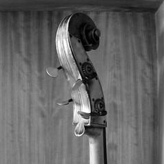 VIAJE POR LA MÚSICA - CONCIERTO PARA ALUMNADO DE PRIMARIA - CONSERVATORIO DE LEÓN 4.4.17 (juanluisgx) Tags: leon spain musica music conservatorio viajeporlamusica lavueltaalmundoenochentadias julesverne verne bandademusica conservatoriodeleon conciertodidactico auditorioangelbarja