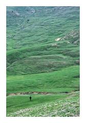 Countryside stories #4 (Florin Aioanei) Tags: countryside landscape nature earth man romania florin aioanei