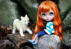 Taking The Dog For a Walk. (Antique Wolf) Tags: blythes licca castle bangs dark elegant leaves grey blythe doll zinochika ooak custom factory scalp sweater jeans capris mary janes dog needle felt felted shiba inu stripes yellow ginger blue dolls toy toys photography lovely pretty