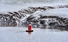 Helford River (pierre_et_nelly) Tags: helfordriver gweek carrickroads cornwall kernow england helford river