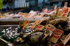 Sashimi OK! (sam.naylor) Tags: street shop food shopkeeper chef stall stand market kyoto japan asia