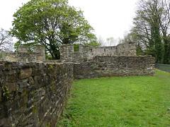 P1110869  Basingwerk Abbey, Holywell, Wales (1) (archaeologist_d) Tags: wales cistercians 12thcentury basingwerkabbey holywell abatydinasbasing