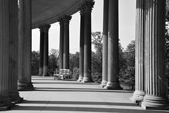 Ein Spaziergang durch die Vergangenheit (Nikonfotografie) Tags: nikonofficials nikonlove nikon potsdam architecture historisch architektur schwarzweis bnw bnwphotography sanssouci castle schlösser schloss