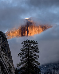 Half Dome Behind Parting Clouds (Jeffrey Sullivan) Tags: yosemite national park yosemitenationalpark valley village mariposacounty california united states usa nature landscape travel photography workshop canon eos 6d photo copyright sullivan may 2017 jeff