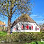 Jannigjes Hof, Langbroekerdijk, Langbroek, Netherlands - 3473 thumbnail