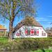 Jannigjes Hof, Langbroekerdijk, Langbroek, Netherlands - 3473