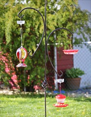 Hummer Station (Sue90ca Falling Behind Again...UGH!) Tags: canon 6d humming bird feeders mothersday