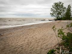 138/365 - Lake Erie