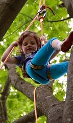 DSC_1276 (Montgomery Parks, MNCPPC) Tags: popupinmontgomeryparks bethesda treeclimbing climbatree tree climbingtrees kids children boys girls arborists elmstreeturbanpark spring may may2017 leaves treetrunks toddler