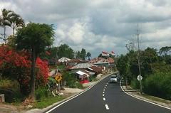 Kintamani - Ubud (scinta1) Tags: baturbaguscottages indonesia bali kintamani kedisan kampung desa village mountbatur gunungbatur lakebatur danaubatur road jalan street