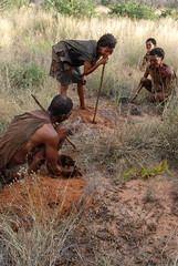 Kalahari - Boscimani in cerca di radici 2009_0512Image0411-1-Lr (claudio6411) Tags: botswana kalahari boscimani etnie popoli people old vecchio volti face