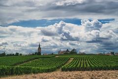 Dordogne (TM Photography Vision) Tags: basel rihen schweiz sony alpha 850 minolta 24105 dordogne france frankreich perigord noir aquitaine bordeaux saint emilion