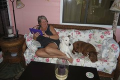 close company (BarryFackler) Tags: bettyfackler bettybowen betty arthur mera sofa lanai outdoor tablet furniture home relaxing woman wahine captaincookhi lamp candles weekend tropical westhawaii polynesia 2017 life hawaii southkona island dogs pets canines rescuedogs companions mixedbreeddogs poidogs captaincook animals contentment peace hawaiiisland kona captaincookhawaii cookslanding hawaiicounty domesticanimals hawaiianislands bigisland barryfackler barronfackler