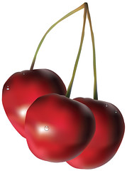 Cherry Illustration (Shahid Abdullah) Tags: cherry fruit illustration illustrative illustrator clipart adobe food cooking meal dish stem plant sweet juice red bunch tree cartoon