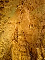 The Lion's Tail formation in the Big Room, Carlsbad Caverns National Park, New Mexico (www.clineriverphotography.com) Tags: rockformations newmexico artificiallighting landscape cave stalactite stalagmite speleothem 2014 location usa carlsbadcavernsnationalpark light